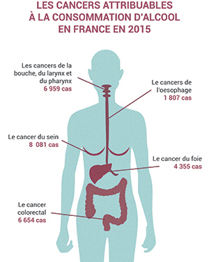 Les cancers attribuables à l'alcool en 2015