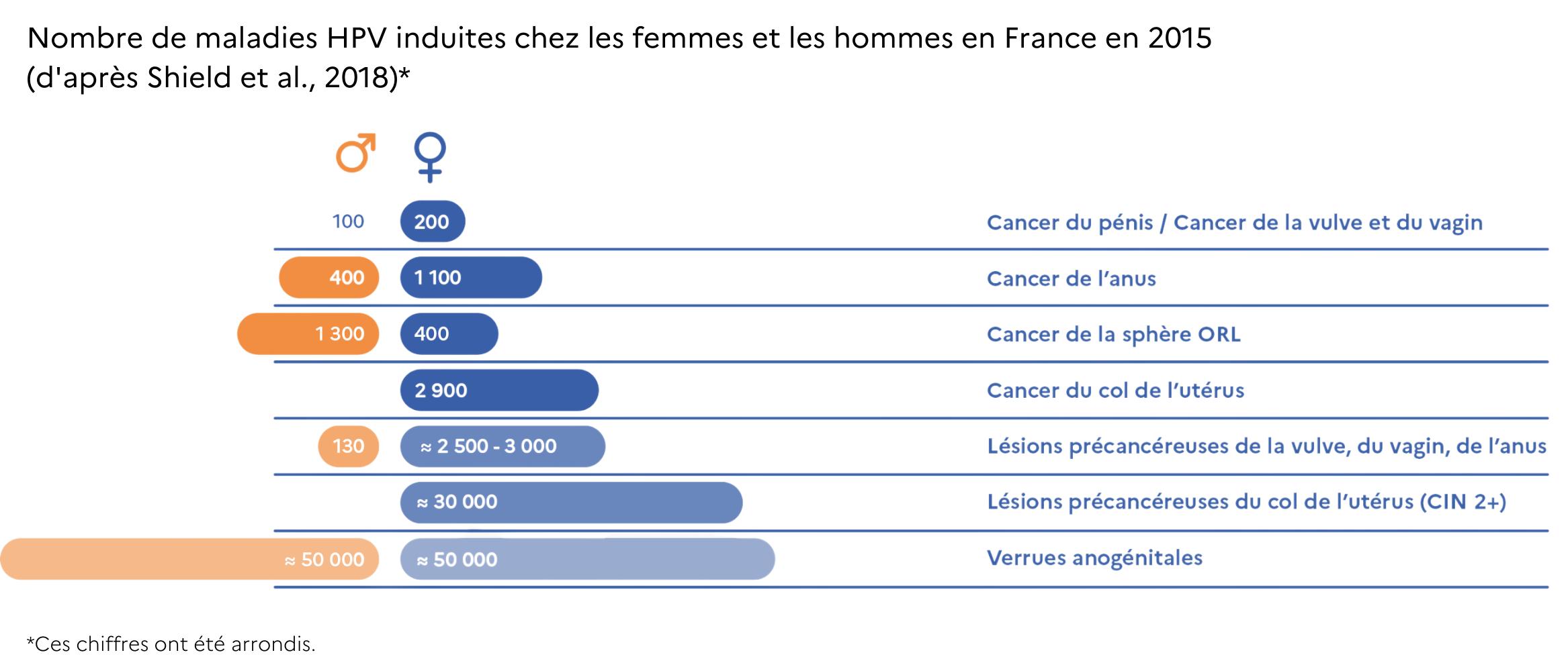Nombre de maladies HPV-induites chez les femmes et les hommes en France en 2015