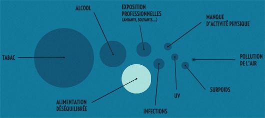 Image : la place de l'alimentation dans les facteurs de risque de cancers