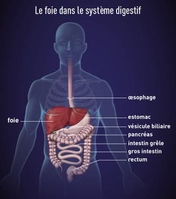 Aidez à guérir lenfant du psoriasis